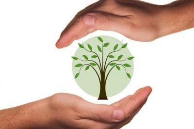 A környezetvédelmet a hatóság továbbra sem rendelheti alá más szempontoknak - AB határozat