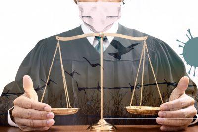 Európai Ügyvédek Napja: október 25 - Téma: Az igazságszolgáltatás folyamatossága és az emberi jogok tisztelete a járvány idején
