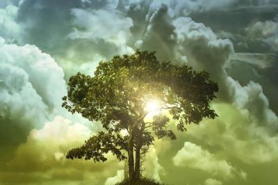 Hétvégi pihentetőül: A boldogságról - Weöres Sándor-Sandra Bullock-Für Anikó