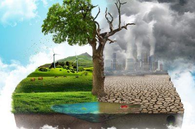Kollektív jogérvényesítési lehetőségre van szükség környezetszennyezési ügyekben - szorgalmazza az ombudsman-helyettes