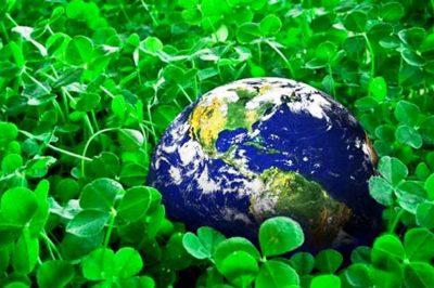 A környezetvédelem jogalkalmazási tapasztalatai - Mit mond a Kúria?