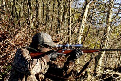 Sok ellentmondásos ítélet születik vadászati ügyekben