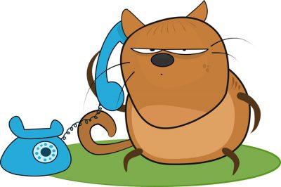 Telefonos időpontfoglalás panasznapra - Újítások