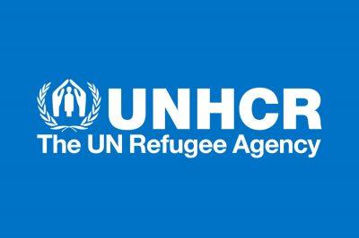 Lesújtó képet fest hazánkról egy ENSZ-jelentés