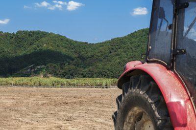 Az EB iránymutatást adott ki a termőföld értékesítéséről