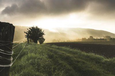 Felülvizsgálják a földtulajdonosok adatbázisát