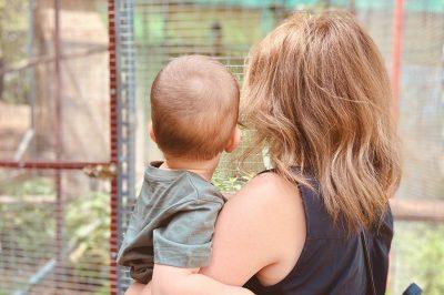 Gyorsulhatnak gyermektartási perek
