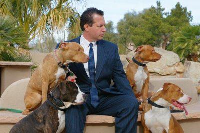 Halálra ítélt kutyákat ment egy ügyvéd
