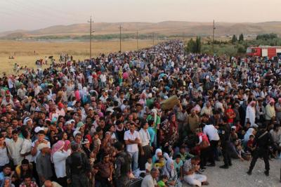 Menekült ügy: Összecsúszott jogi fogalmak - Jogi válság