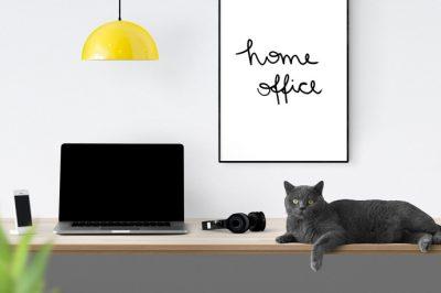 """Nem világosak az otthoni munkavégzés, a """"home office"""" jogi keretei"""