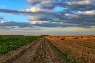 Jogsértő a haszonélvezeti jogot korlátozó magyar szabályozás