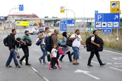 3555 - ennyi menekültnek van magyar személyije - Beszéljenek a számok
