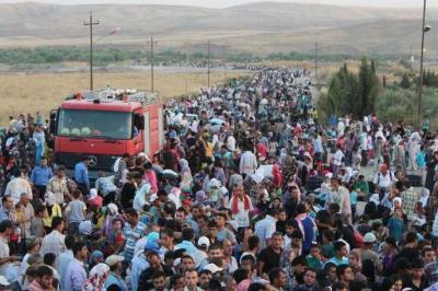 Migránsok - Az emberi jogokért és a szakszerű jogi tanácsért szólalt fel a CCBE